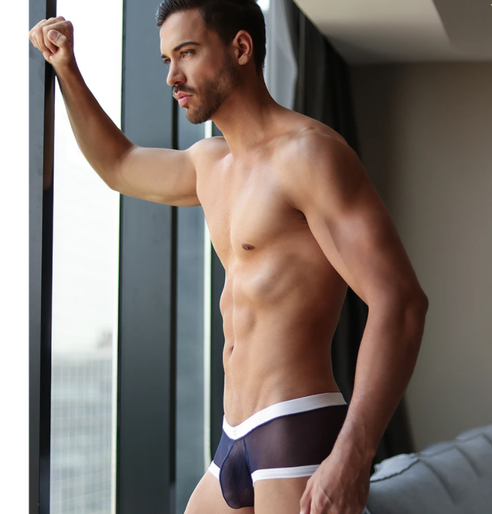 mens sheer underwear